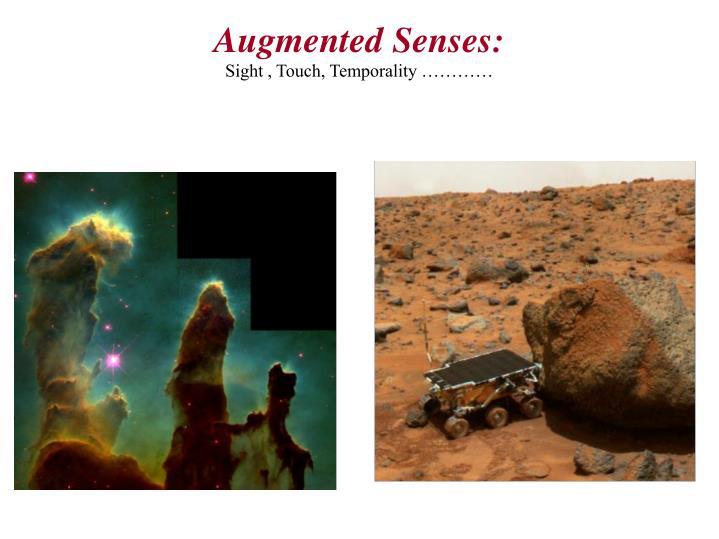 Augmented Senses: