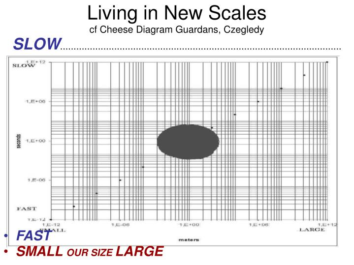 Living in New Scales
