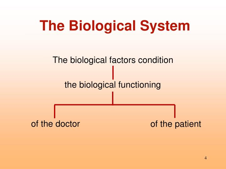 The Biological System