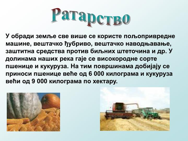 Ратарство