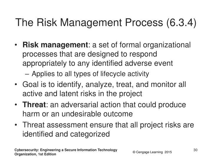 The Risk Management Process (6.3.4)