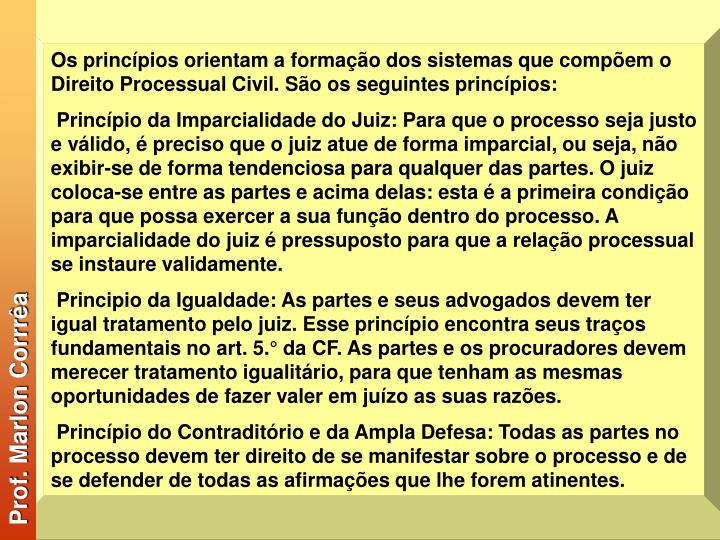 Os princípios orientam a formação dos sistemas que compõem o Direito Processual Civil. São os seguintes princípios: