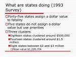 what are states doing 1993 survey