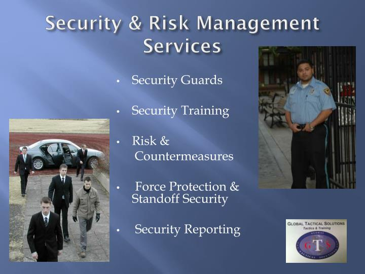 Security & Risk Management Services
