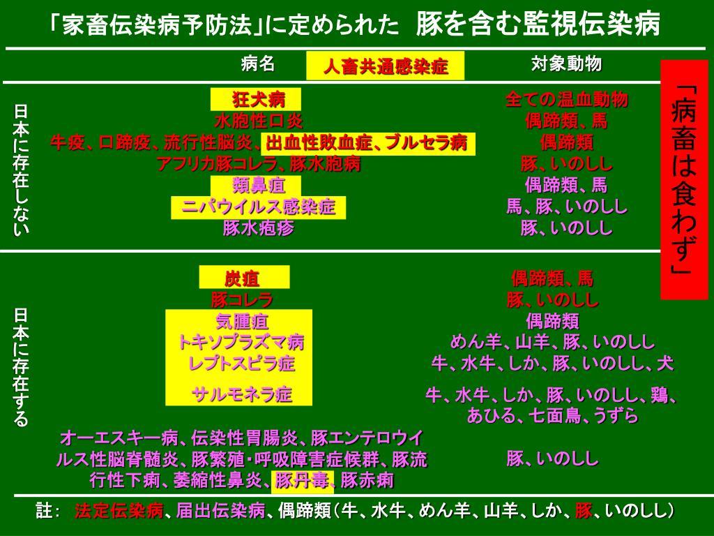 PPT - 日 本 中 央 競 馬 会 特別振興資金助成事業 PowerPoint ...