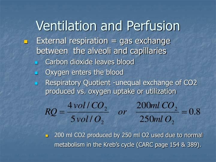 Ventilation and Perfusion