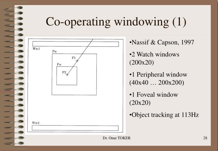 Co-operating windowing (1)