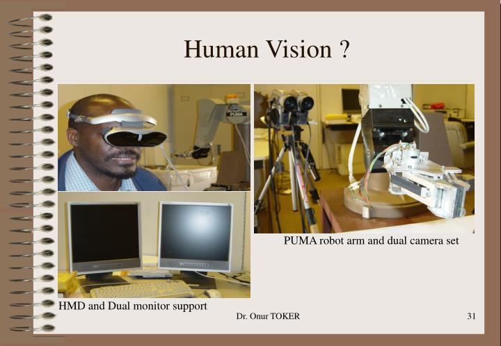Human Vision ?