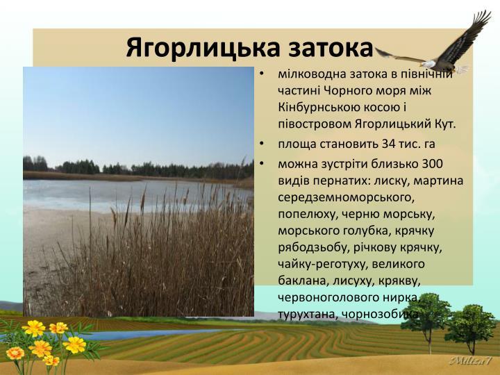 Ягорлицька затока