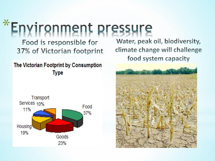 Food is responsible for 37% of Victorian footprint