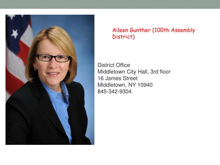 Aileen Gunther (100th Assembly District)