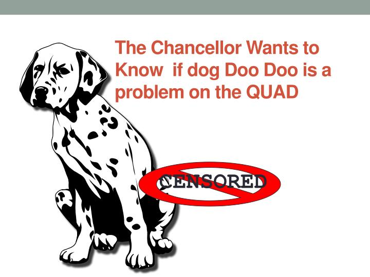 The Chancellor Wants to Know  if dog Doo Doo is a problem on the QUAD