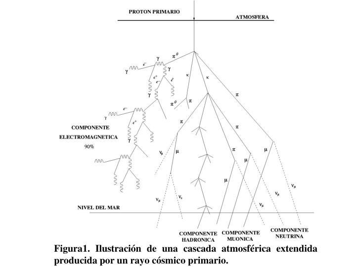 Figura1. Ilustración de una cascada atmosférica extendida producida por un rayo cósmico primario.