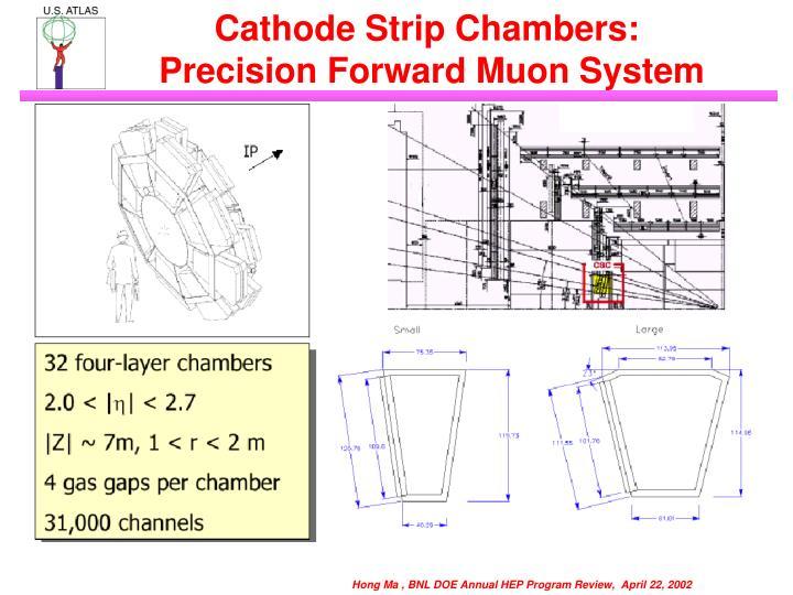 Cathode Strip Chambers: