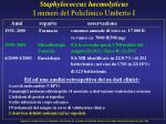 staphylococcus haemolyticus i numeri del policlinico umberto i