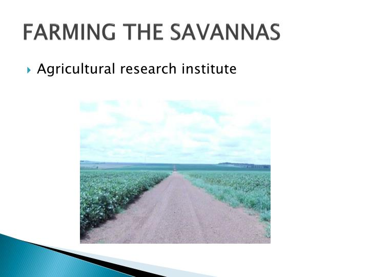 FARMING THE SAVANNAS