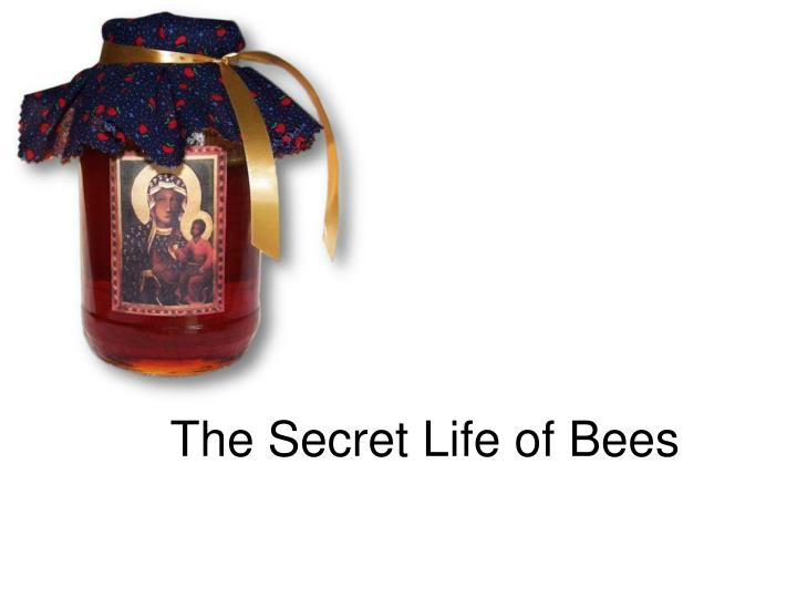 the secret life of bees symbolism