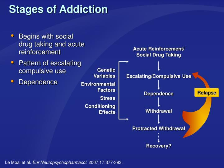 Begins with social drug taking and acute reinforcement