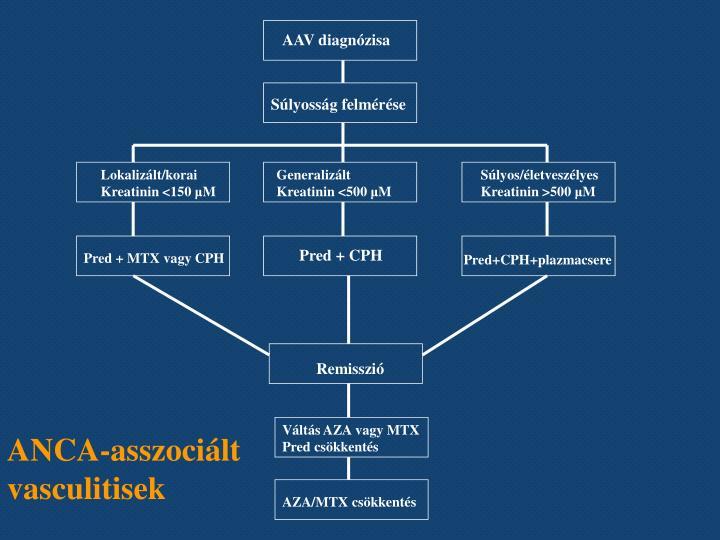 ANCA-asszociált