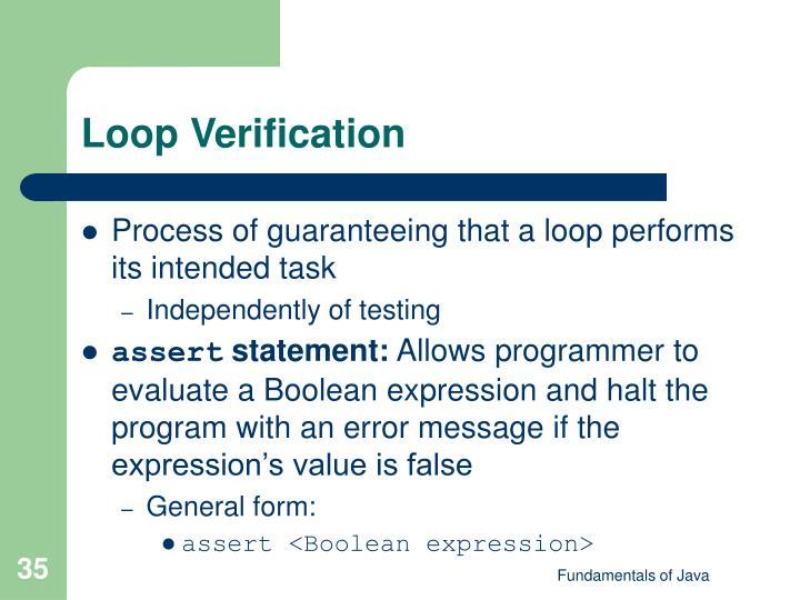 Loop Verification