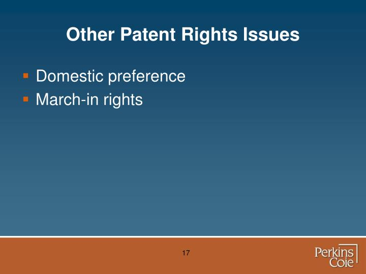 Other Patent Rights Issues