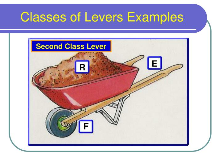 Ppt Lever Systems Powerpoint Presentation Id6008248