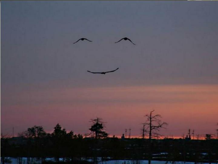 Egy mosoly az égből!