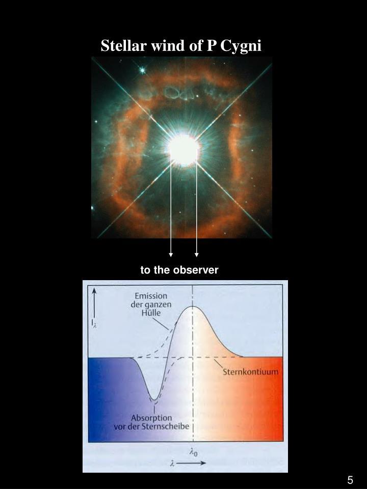 Stellar wind of P Cygni