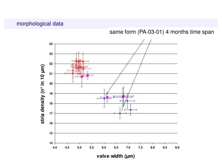 morphological data
