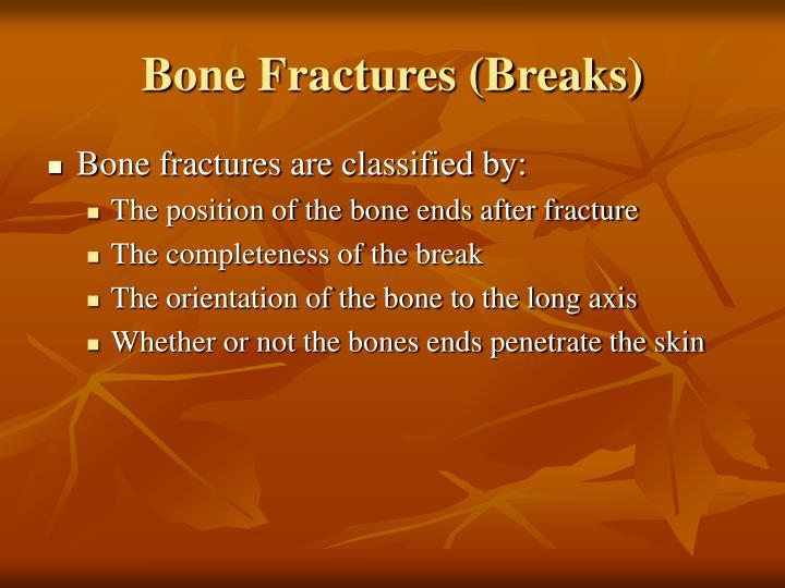Bone Fractures (Breaks)