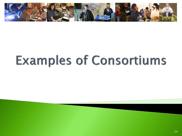 Examples of Consortiums