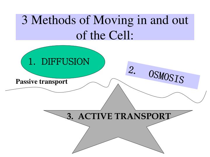 3 Methods of Moving in and out of the Cell: