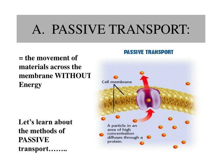 A.  PASSIVE TRANSPORT: