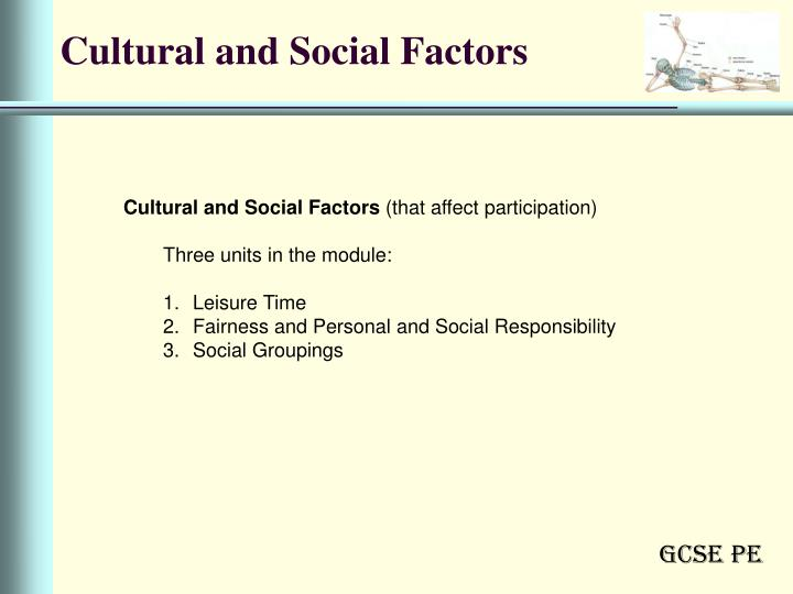 factors affecting participation in certain sports essay Sport participation has become a fixture in sport participation and the effect on one's because of the strong ethnic labels applied to certain sports.