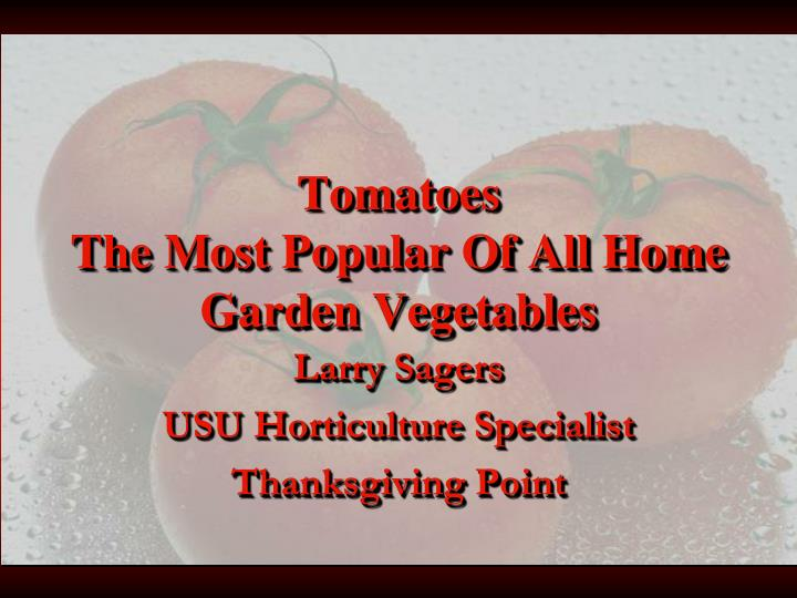 tomatoes the most popular of all home garden vegetables n.