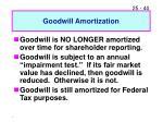 goodwill amortization