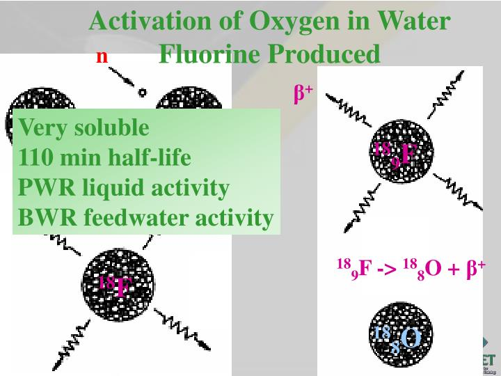 Activation of Oxygen in Water