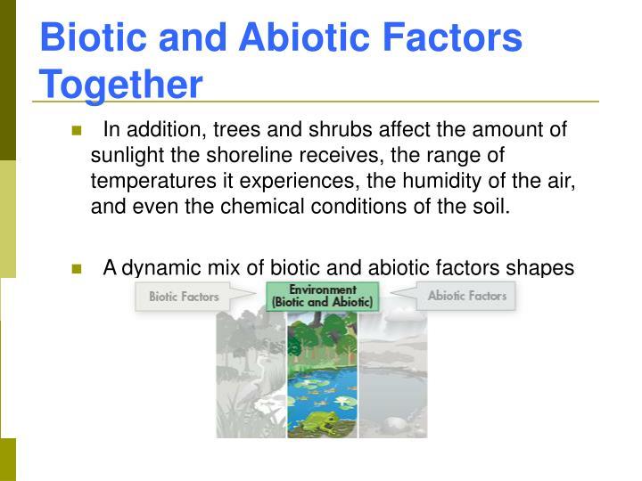 Biotic and Abiotic Factors Together