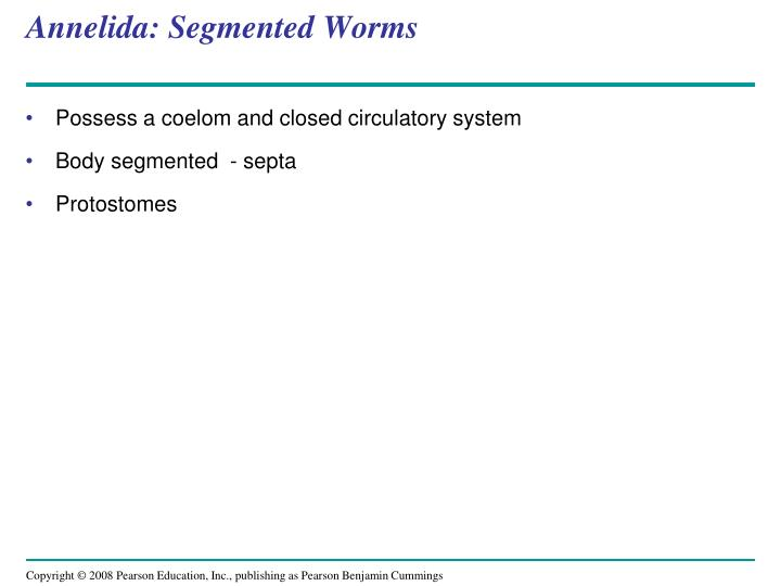 Annelida: Segmented Worms