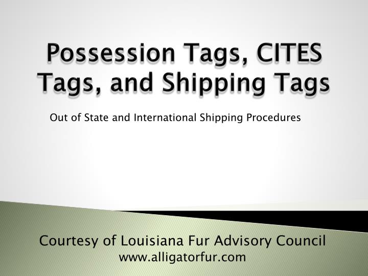 possession tags cites tags and shipping tags n.