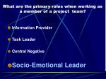 what are the primary roles when working as a member of a project team3