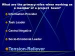 what are the primary roles when working as a member of a project team4