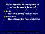 what are the three types of norms in work teams2