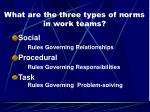 what are the three types of norms in work teams3