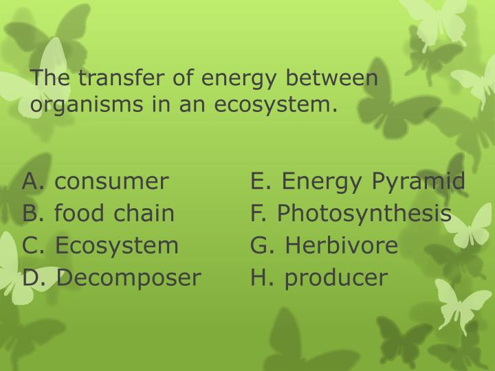 energy transfers which take place in living organisms essay The essay on energy transfers which take place in living organisms cristae (the folded inner membrane) to provide a large surface area of the membrane, thus allowing for more reactions to by a membrane, but they are close to the surface of the cell to catch the maximum amount of.