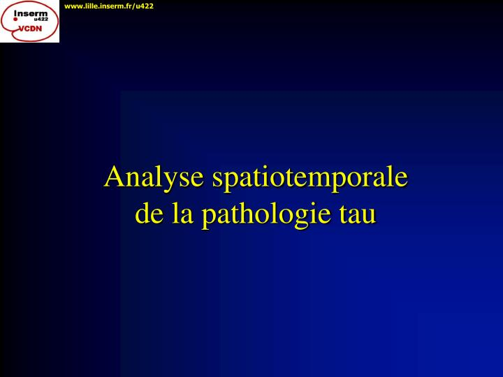 Analyse spatiotemporale