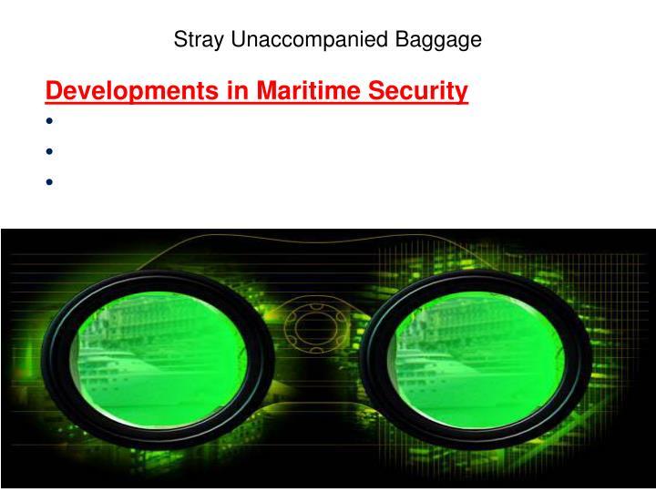 Developments in Maritime Security