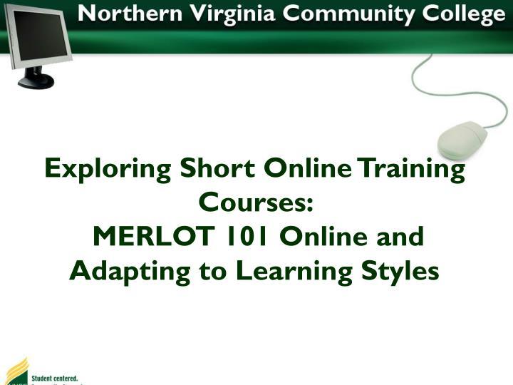 Exploring Short Online Training Courses: