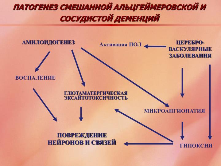 ПАТОГЕНЕЗ СМЕШАННОЙ АЛЬЦГЕЙМЕРОВСКОЙ И СОСУДИСТОЙ ДЕМЕНЦИЙ
