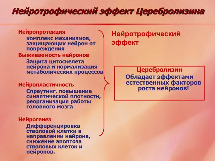 Нейротрофический эффект Церебролизина